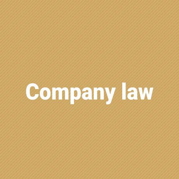 companyLaw_jasny