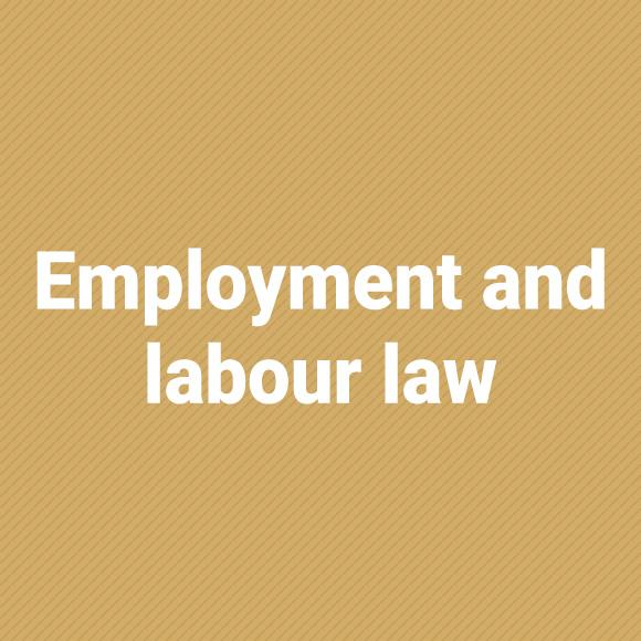 employmentLL_jasny