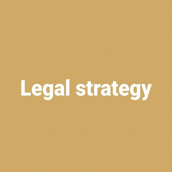 legalStrategy_jasny