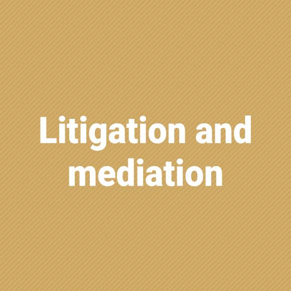 litigation_jasny