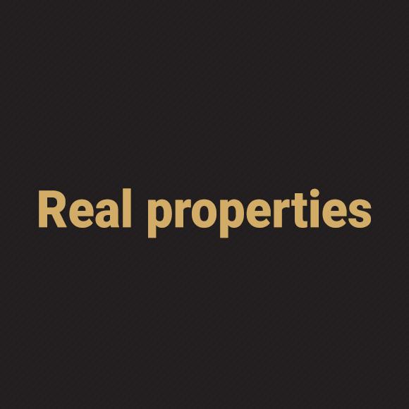 real_properties_ciemny