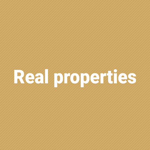 real_properties_jasny